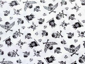 Plátno Černé lebky na bílé