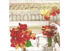 6113 ubrousek 33x33 cm autumn moments