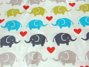 Plátno Sloni na vanilkové