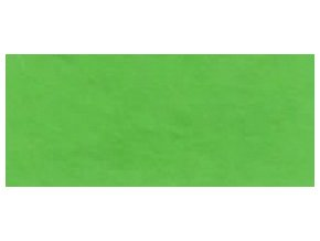 Fotokarton A4 300 g/m2 - 53 zelený středně