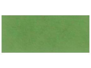 Fotokarton A4 300 g/m2 - 57 zelený list