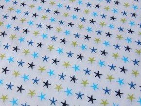 Plátno Hvězdice modrozelené