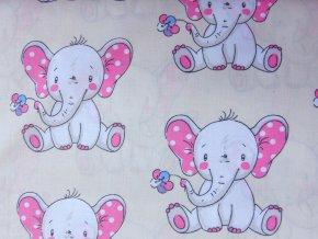 Plátno Sloni na béžové