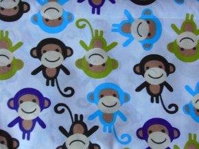 Plátno Opičky modrozelené