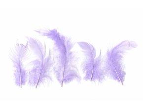 Peříčka 6 - 10 cm 10 g fialová světle