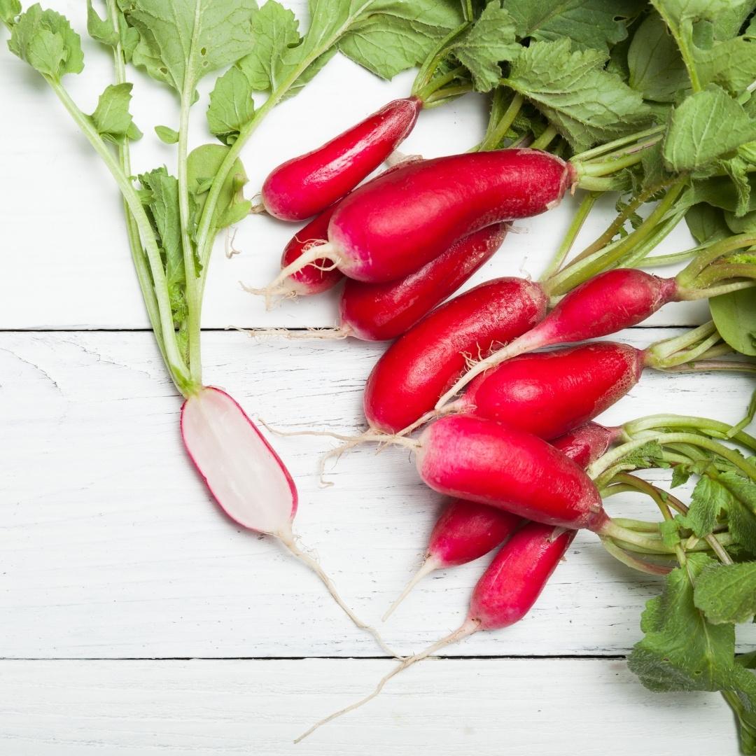 Zahrada-pro-radost-Tvorimesrdcem