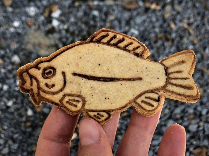 ryba 1b
