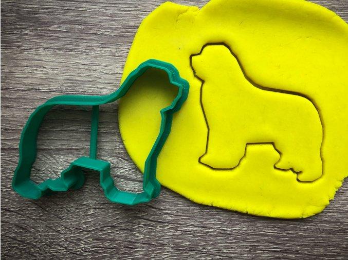 novofundlandský pes obrys 2