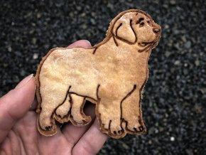 novofundlandský pes 55