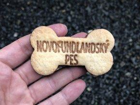 novofundlandský pes kostičkaa