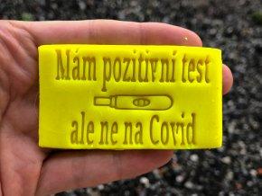 pozitivní test