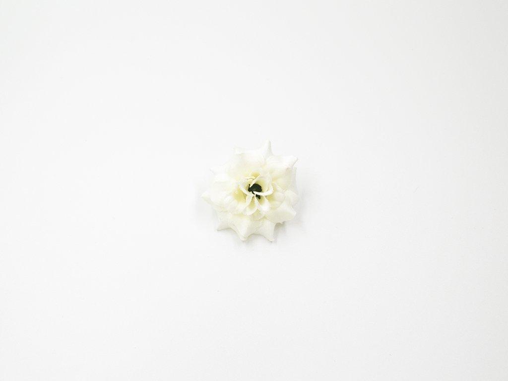 Růže 010 bílá