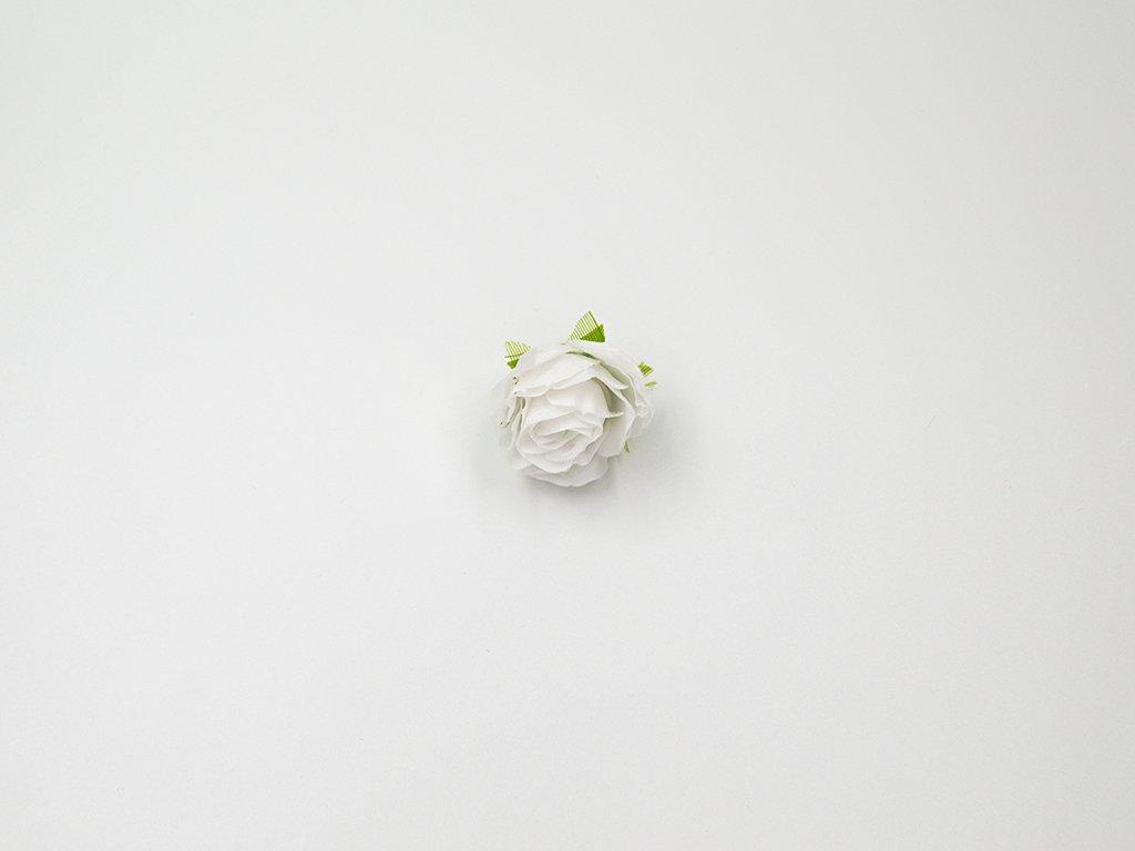Růže 003 bílá