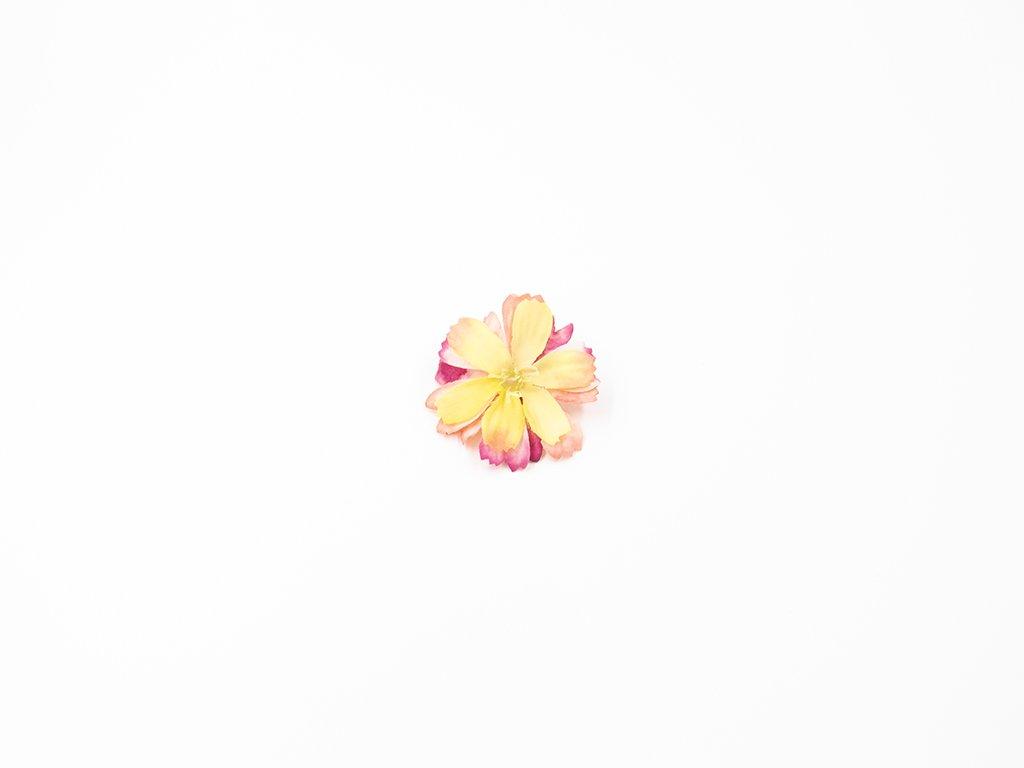 Čekanka 002 růžovo žlutá