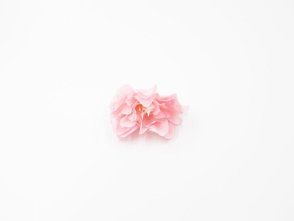 Kamélie 003 růžová