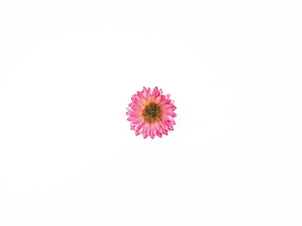 Kopretina 004 růžová