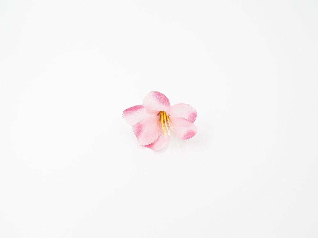Lilie 001 růžová žíhaná