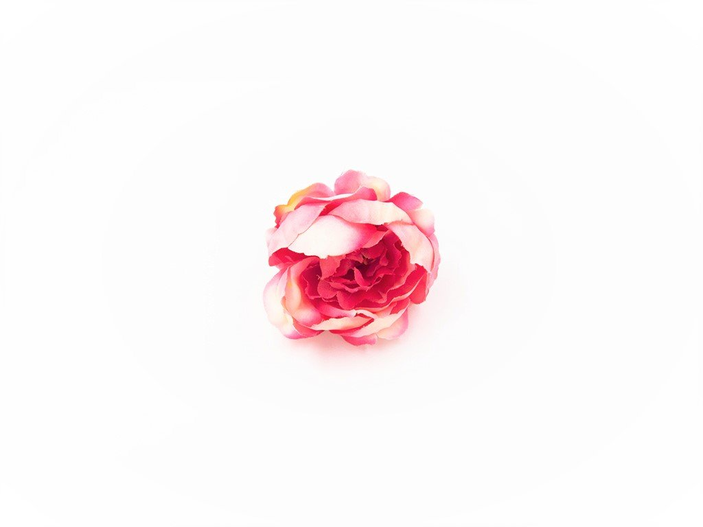 Pivoňka 004 pastelově růžová