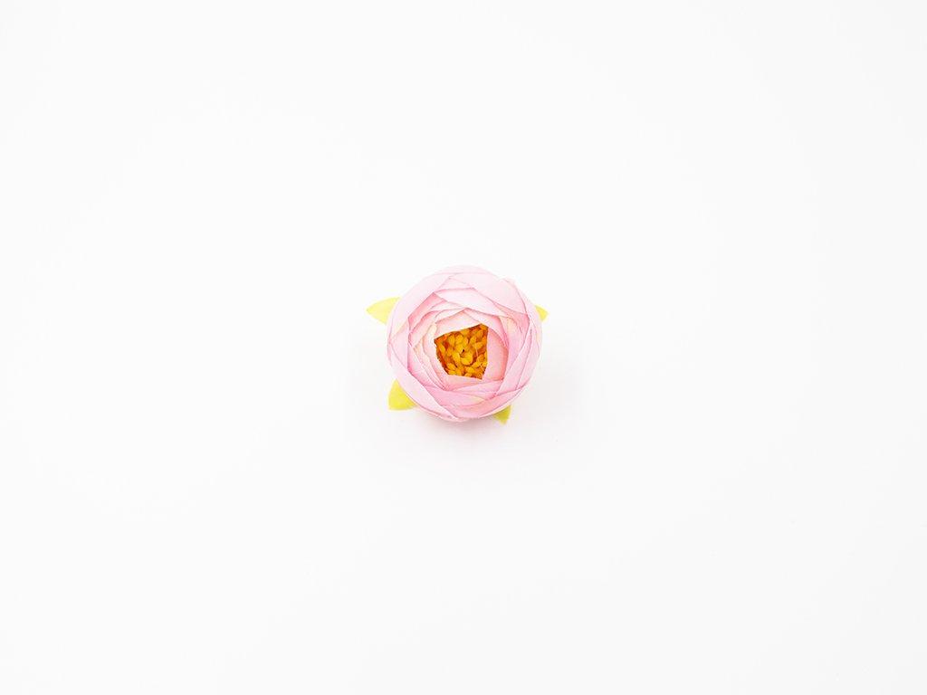 Pryskyřník 003 růžový