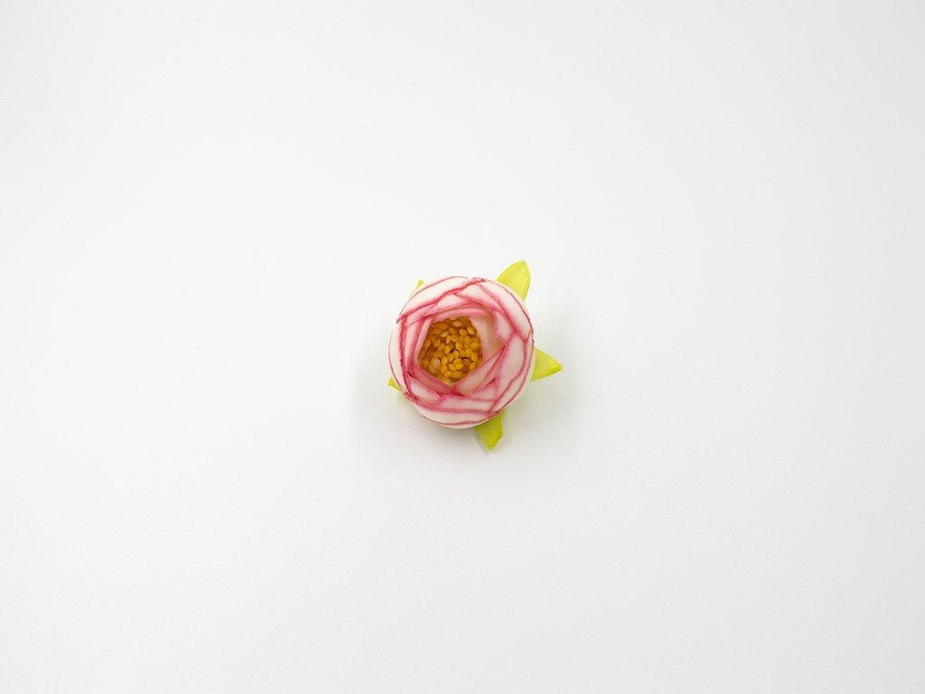 Pryskyřník 003 růžovo bílý