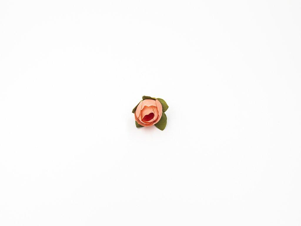 Růže 001 meruňková