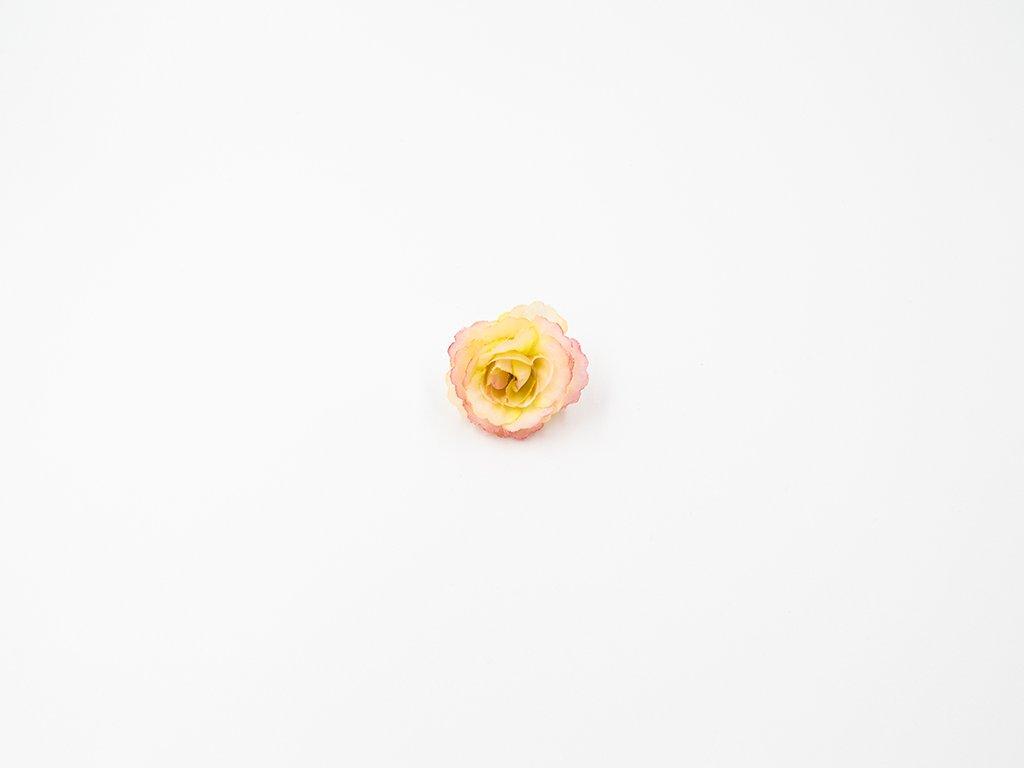 Růže 005 růžovo meruňková