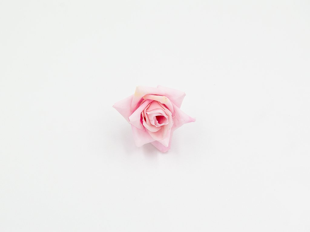 Růže 007 růžová