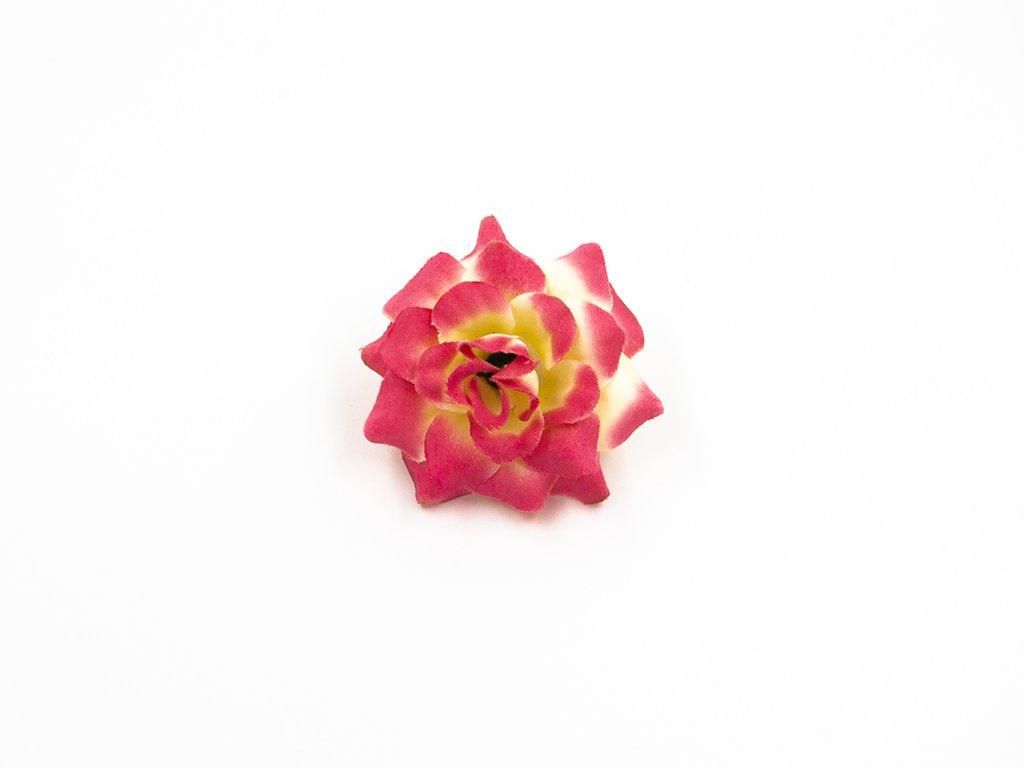 Růže 010 žluto růžová