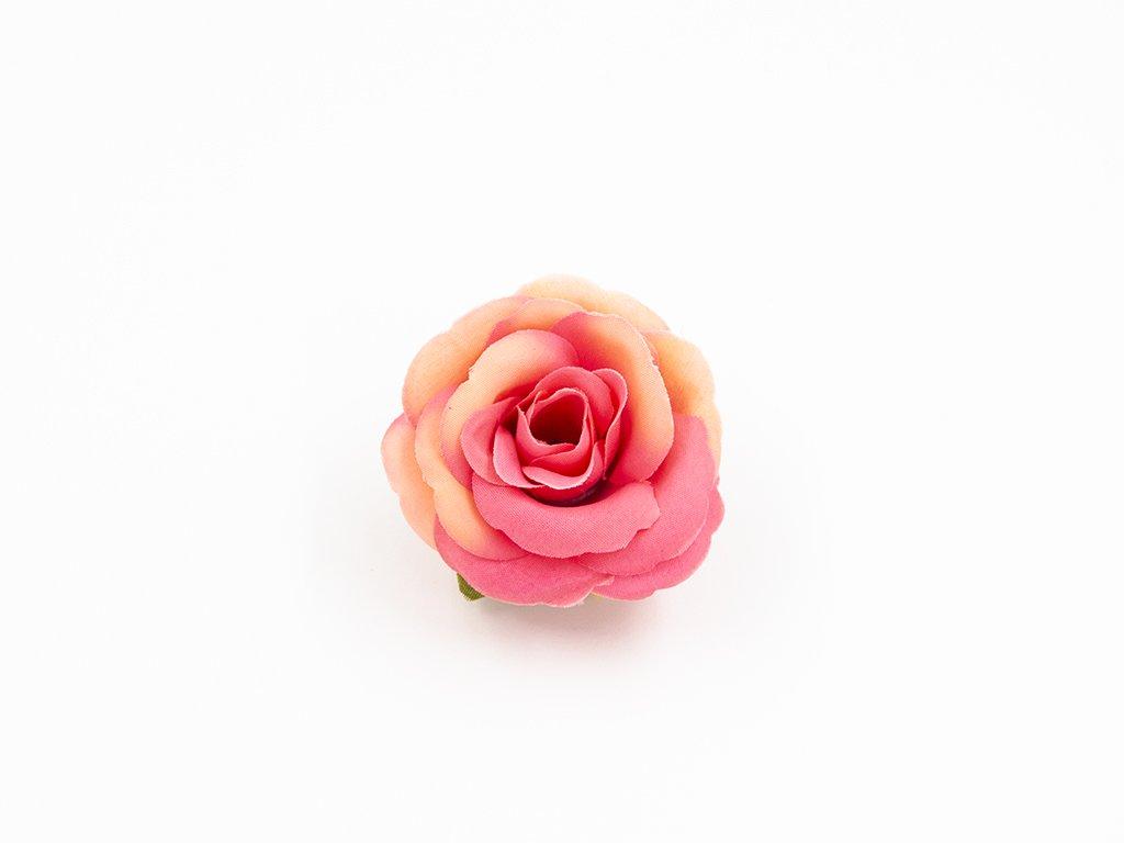 Růže 015 meruňkovo růžová