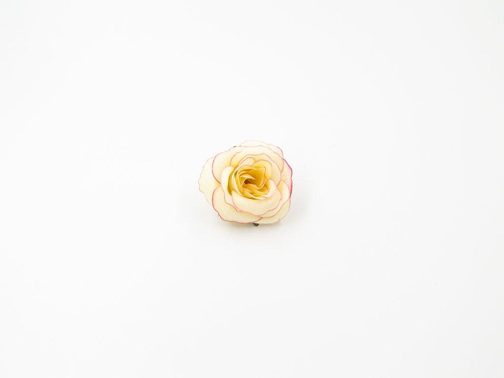 Růže 015 růžovo meruňková