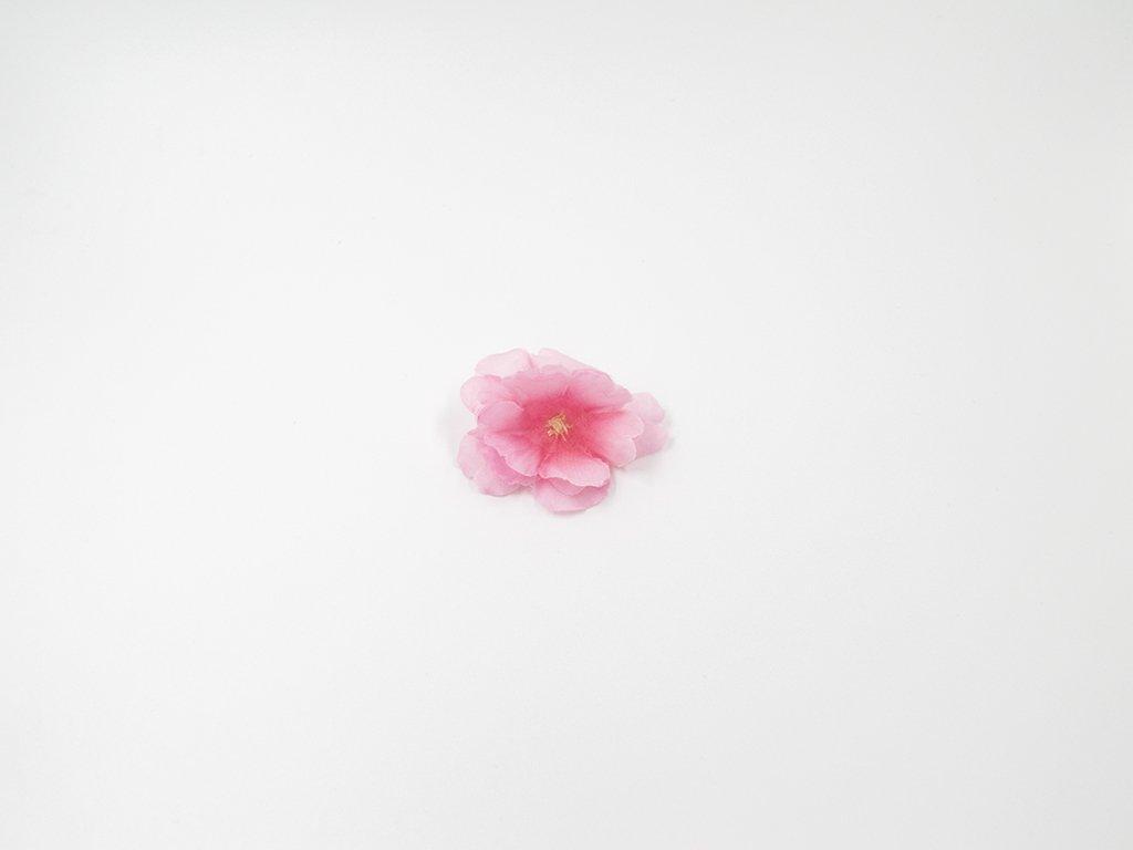 Třešeň 003 růžová