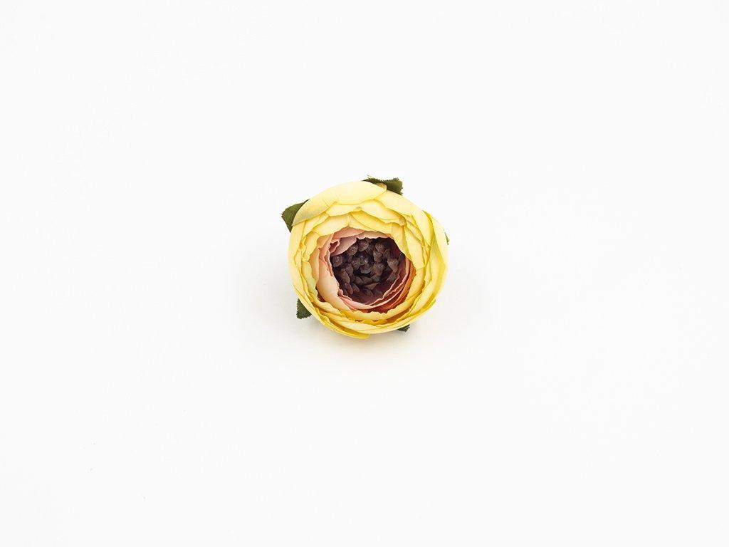 Pryskyřník 002 růžovo žlutý