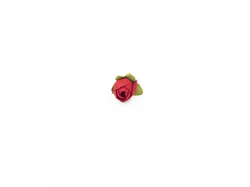 Růže 001 červená