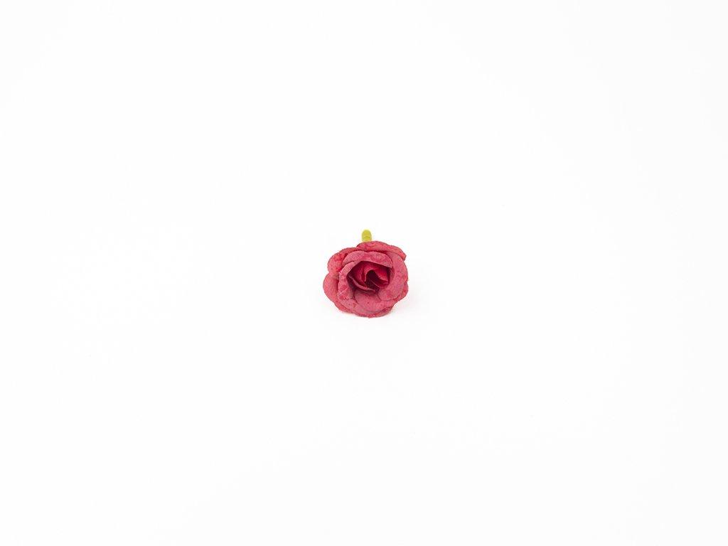 Růže 002 tmavě růžová