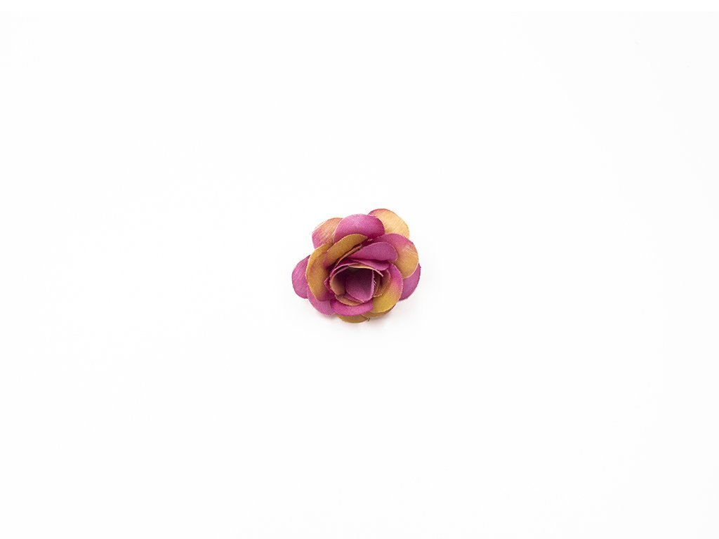 Růže 009 fialová