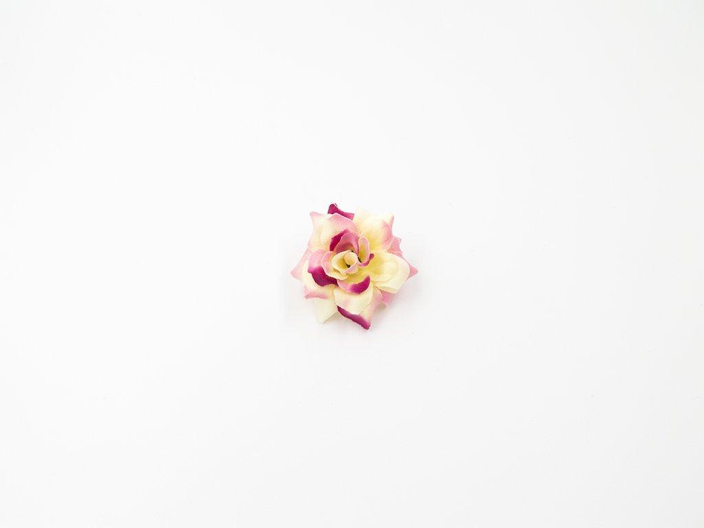 Růže 010 růžovo smetanová