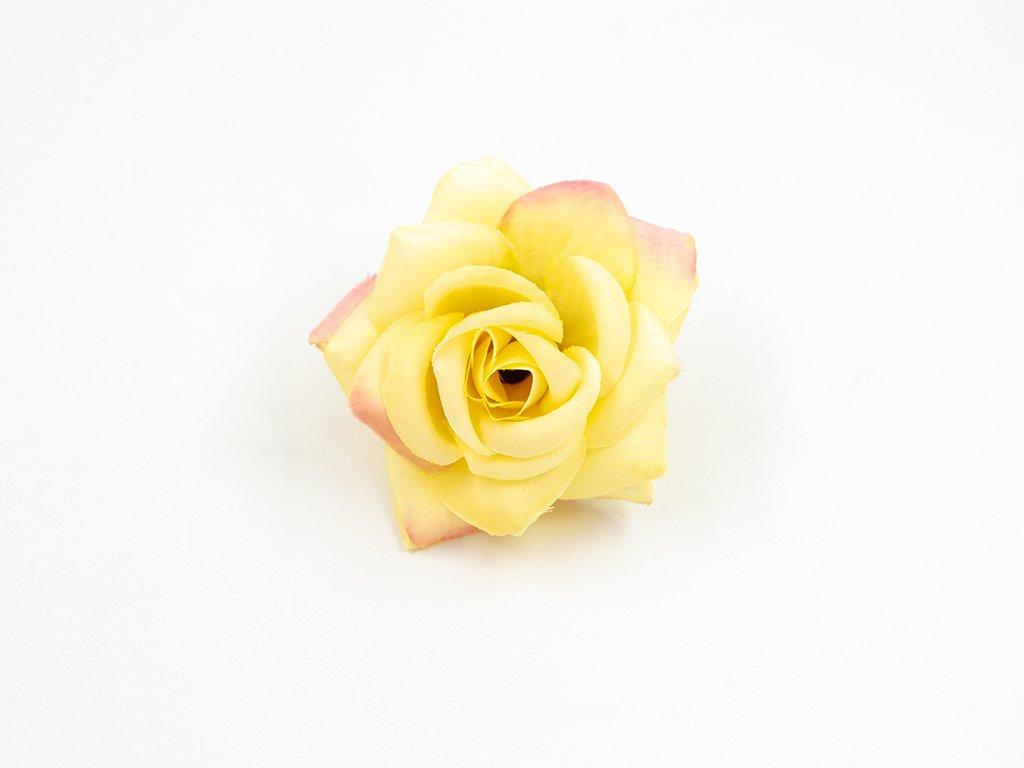 Růže 20 žlutá