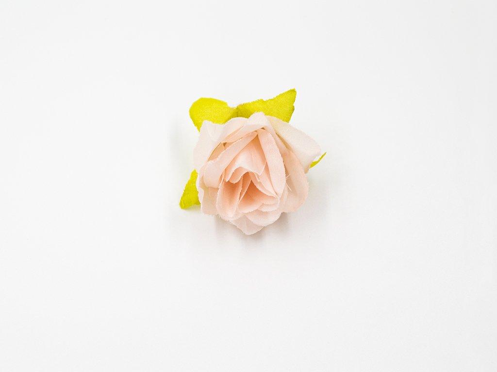 Růže 017 meruňková