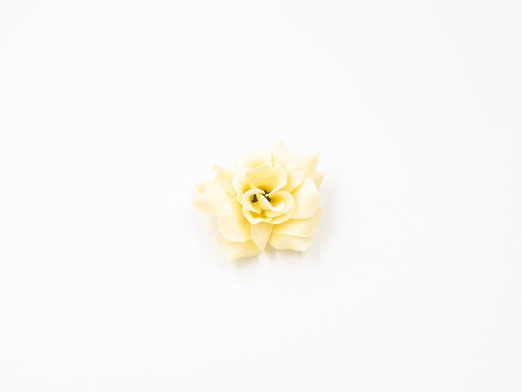 Růže 010 smetanová
