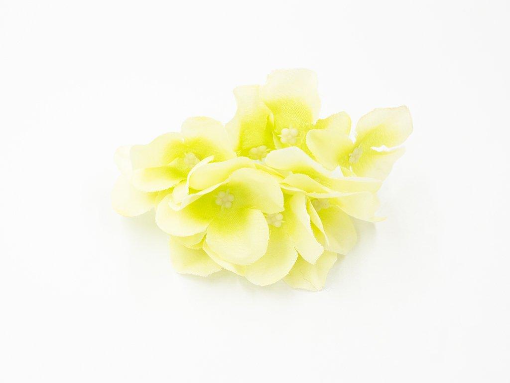 Hortenzie 001 zelenkavá