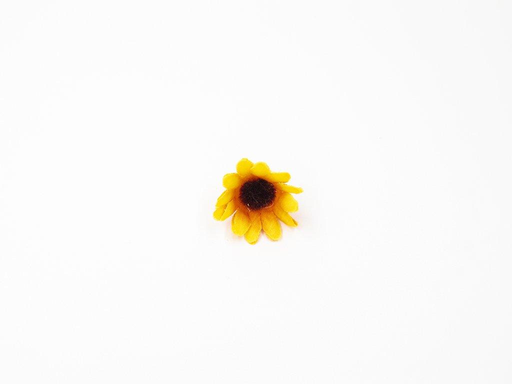Slunečnice 001