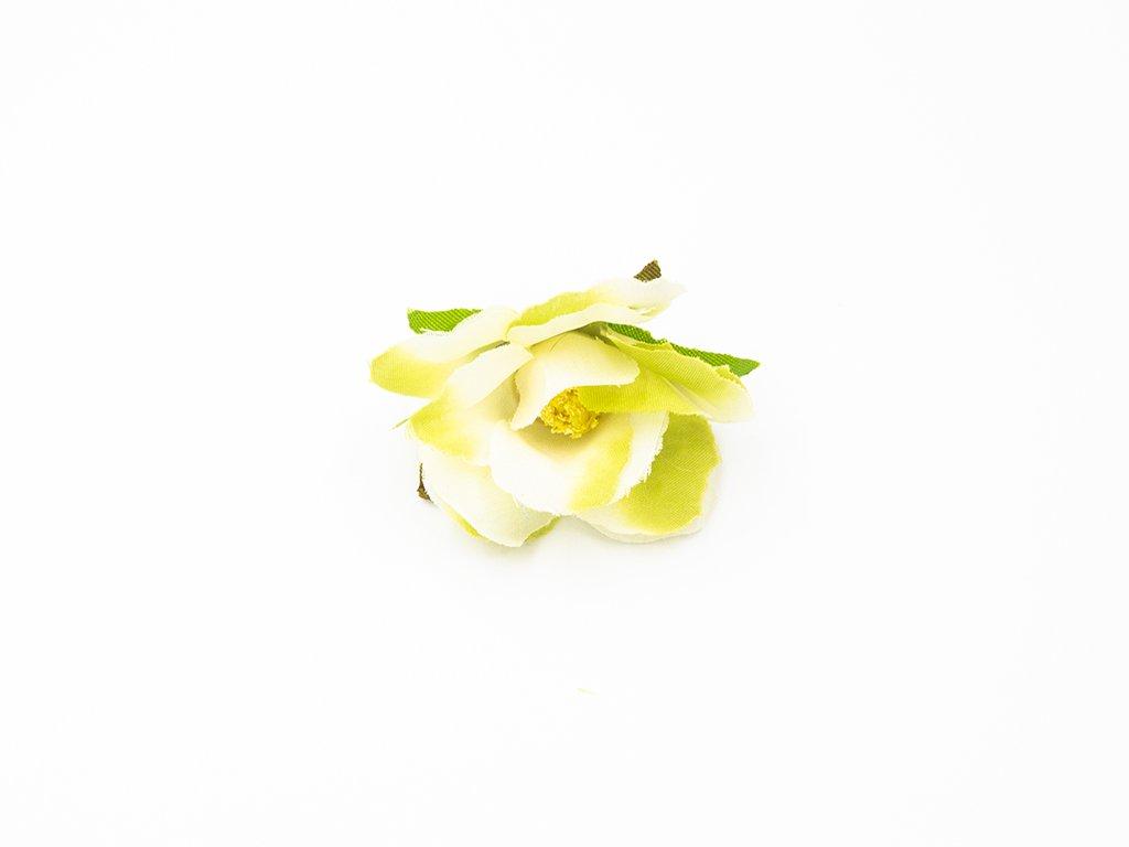 Růže 013 zelenkavá