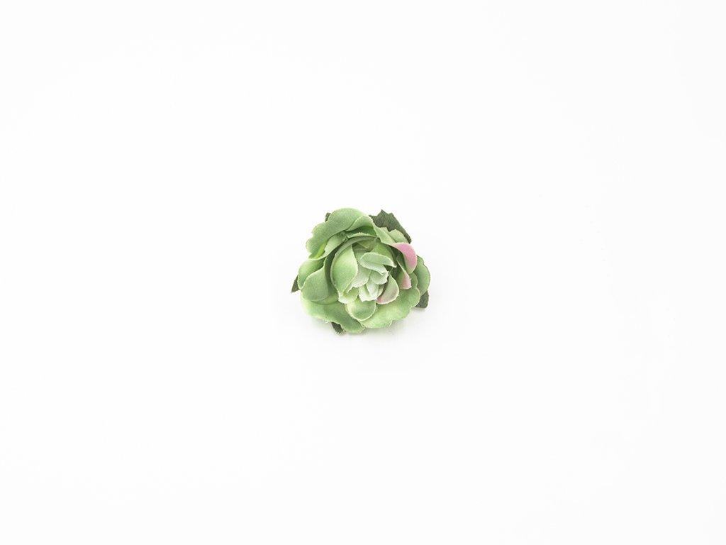 Růže 004 zelená