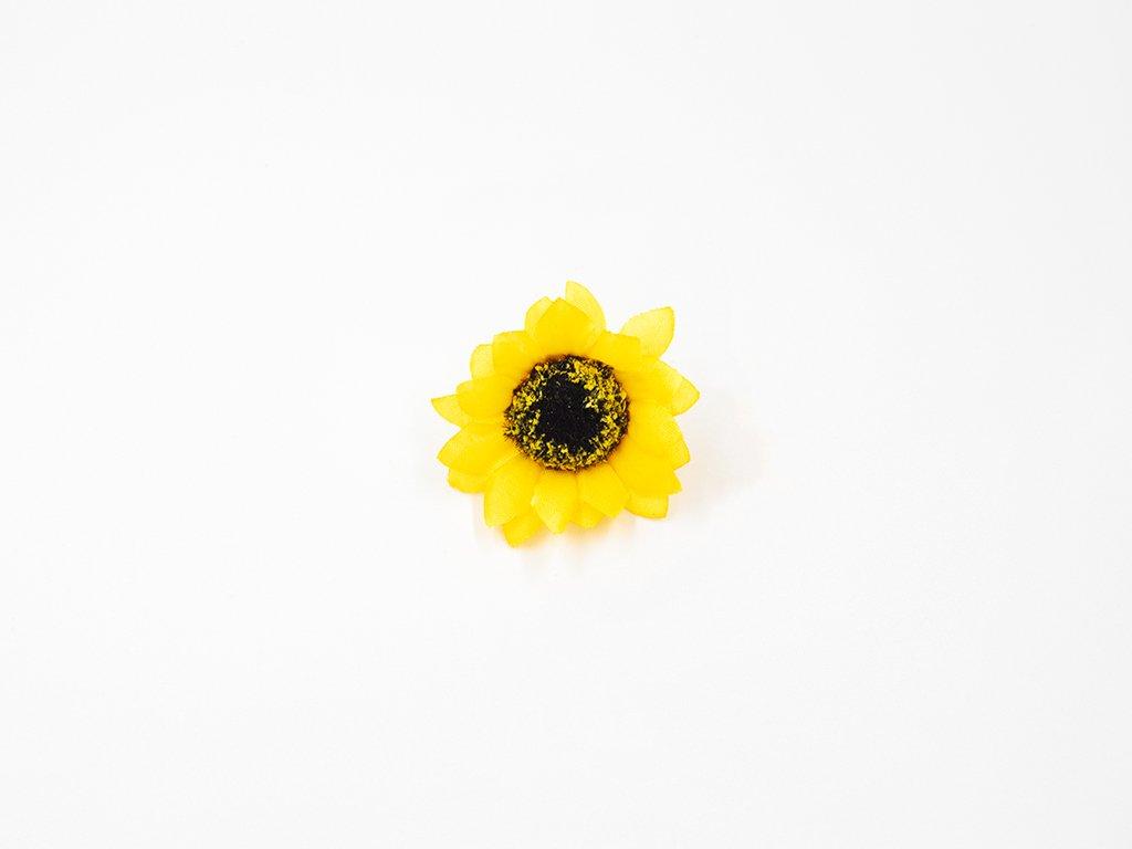 Slunečnice 002