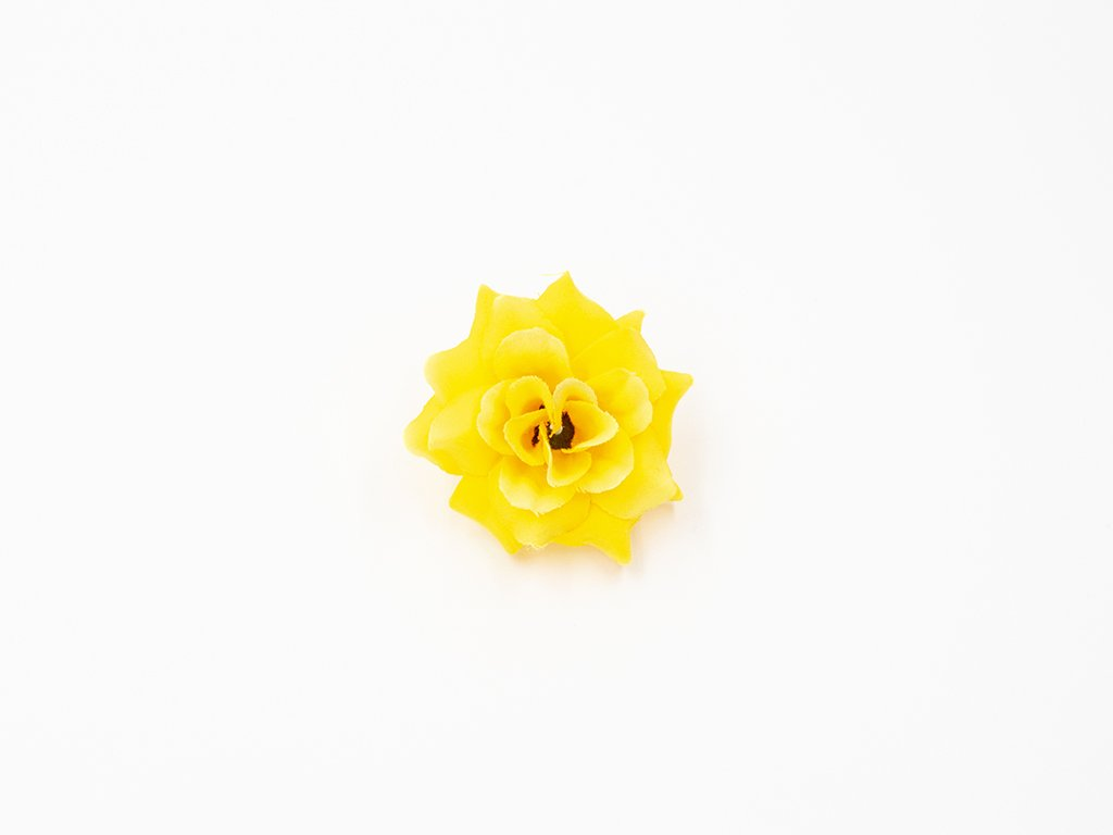 Růže 010 žlutá