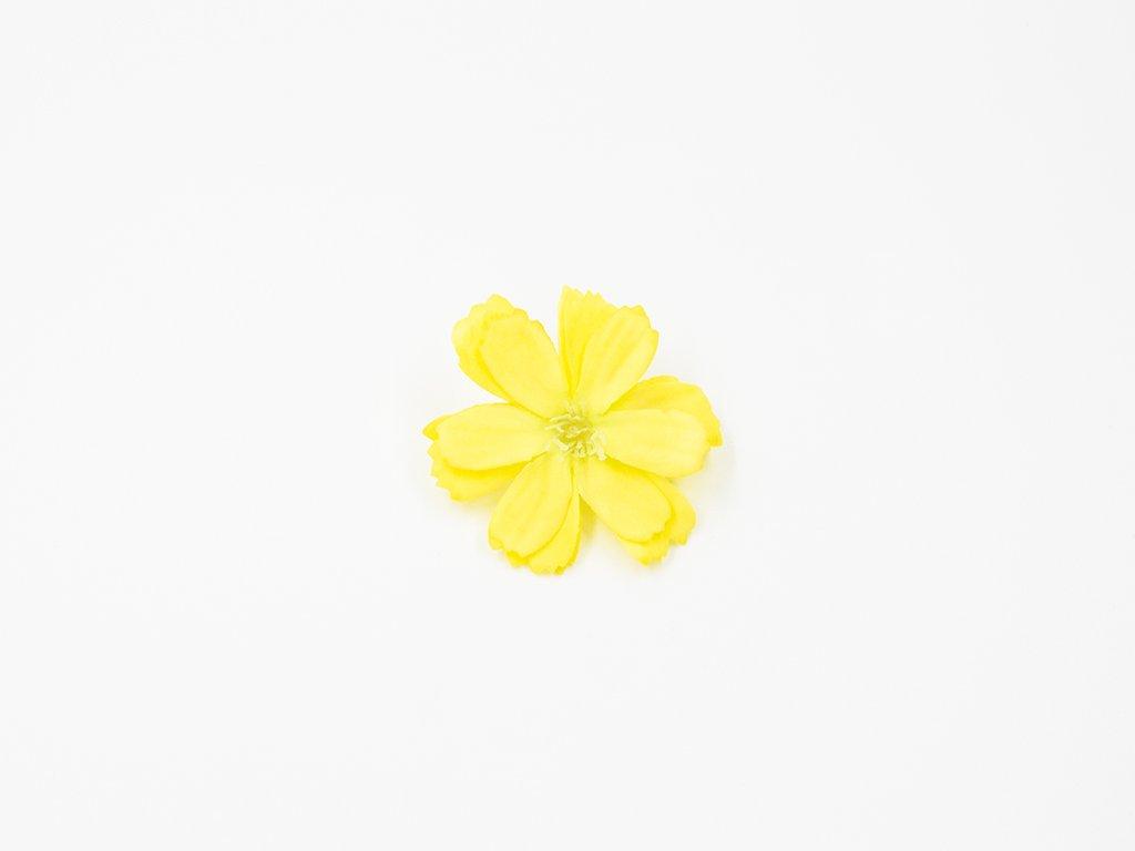 Čekanka 002 žlutá