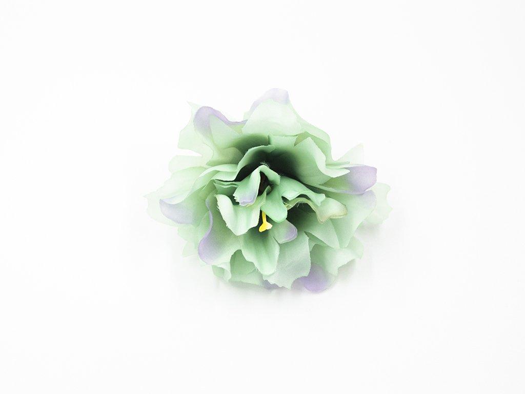 Kamélie 003 zelená