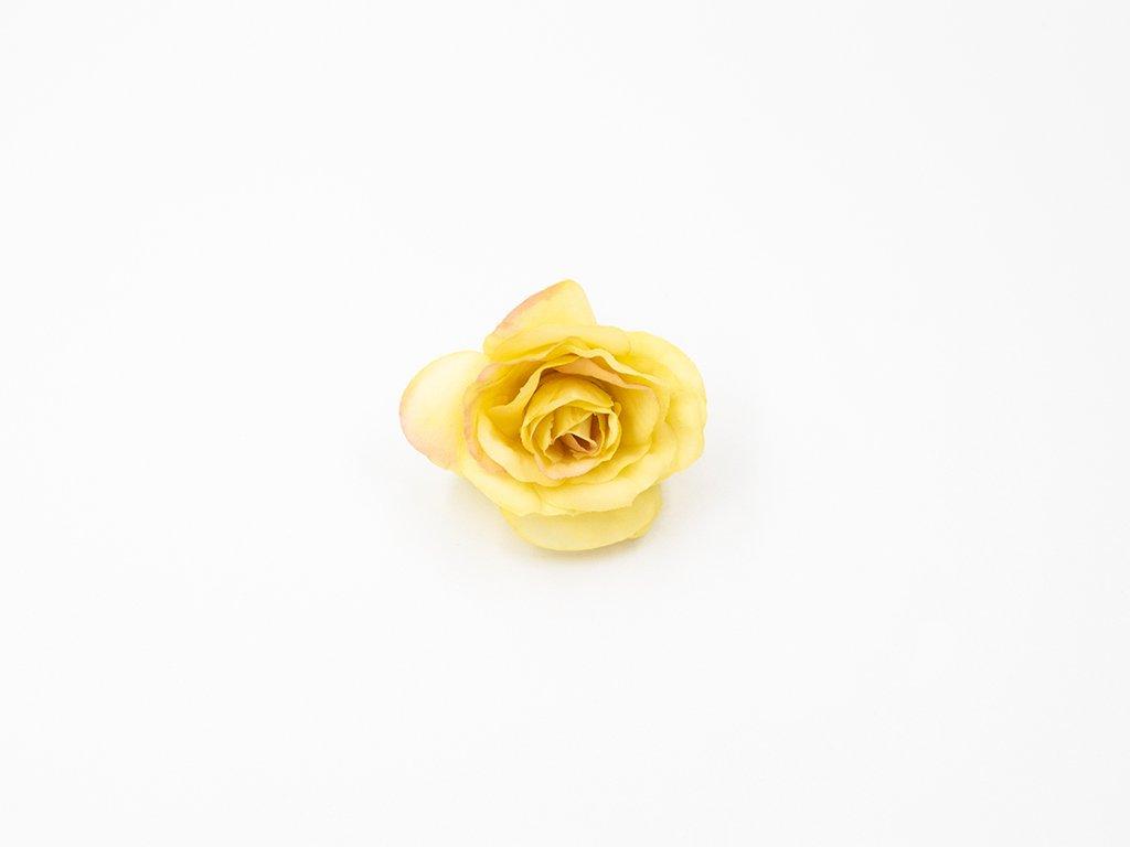 Růže 011 žlutá