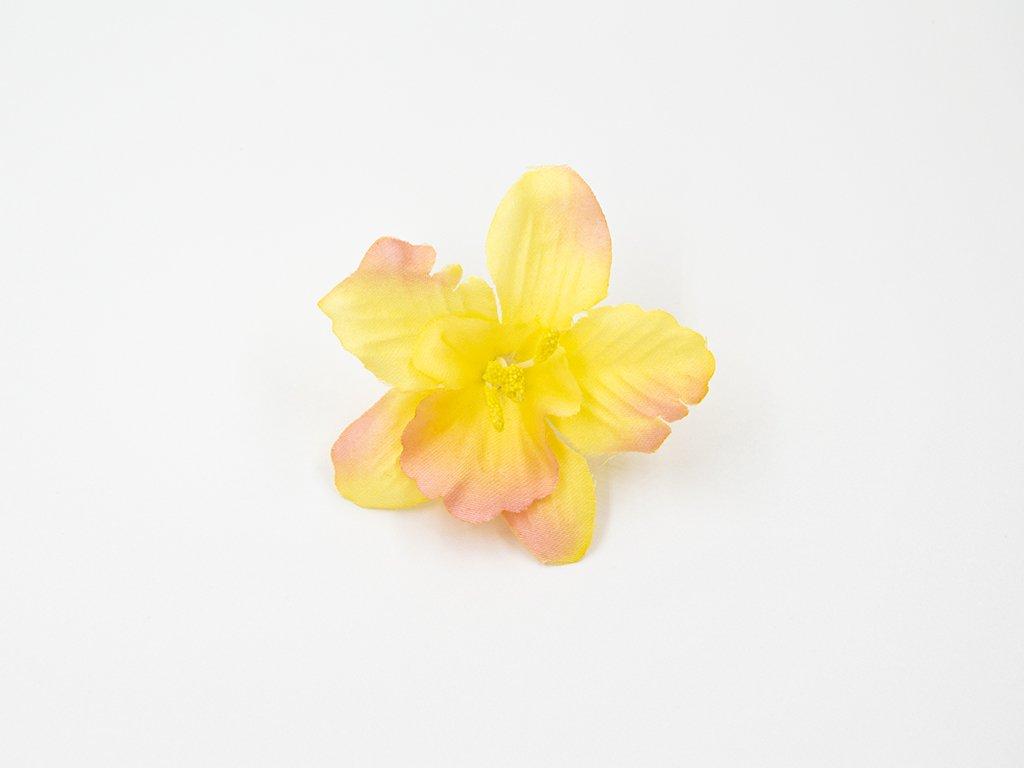 Orchidej 001 žlutá
