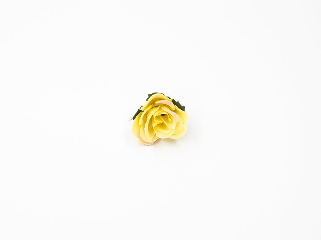 Růže 004 žlutá